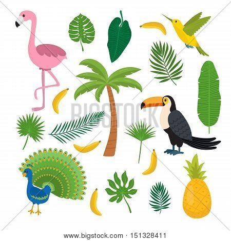 Toucan hummingbird and flamingo. Summer tropical graphic elements. Flat design. Jungle floral background. Jungle birds. Banana pineapple palma. Vector illustration