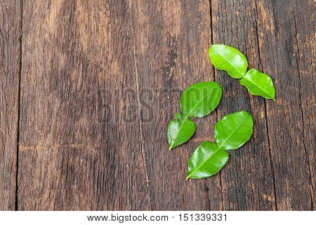 Kaffir lime leaves on wooden floor background Top view with copy space