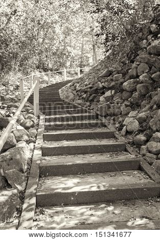 sepia vertical image of stairs outdoors leading up around a hill out of viewers eye