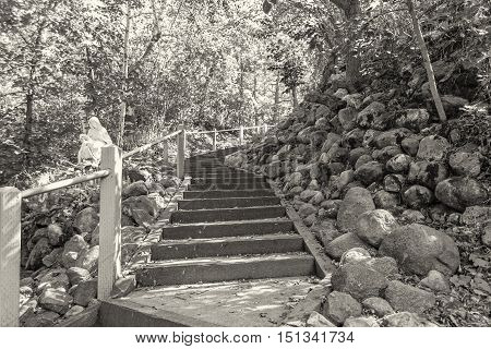 sepia coloured horizontal image of stairs in the outdoors leading up around a hill out of viewers eye