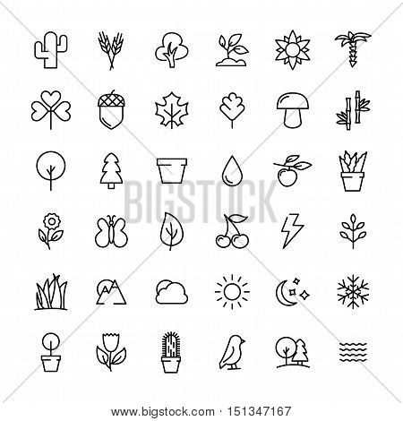 Set of nature icons in modern thin line style. High quality black outline leaves and trees symbols for web site design and mobile apps. Simple linear nature pictograms on a white background.