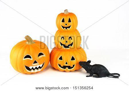 Halloween pumpkin lantern and black rat isolated on white background