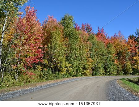 Fall landscape, Quebec, canada whit nice colors