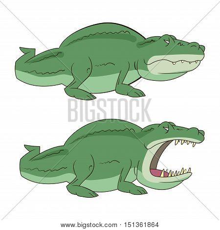 crocodile, croc, alligator vector illustration isolated on white