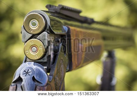 Shutter hunting rifle close-up on a background of nature.