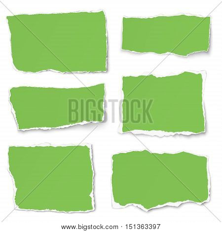 Set of green paper different shapes tears isolated on white background