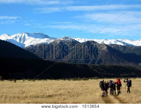 Hikers In New Zealand