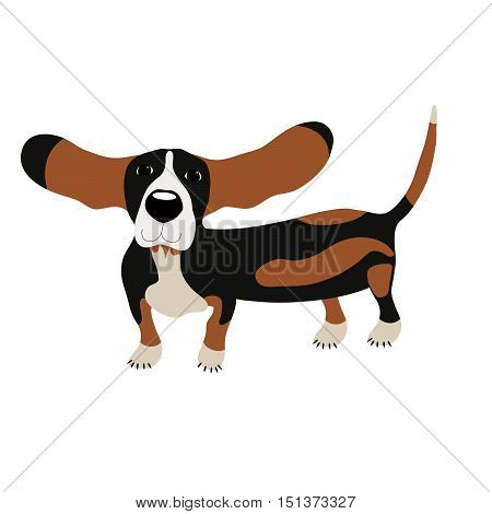 Dog Basset hound, vector illustration, cute dog