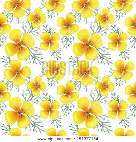 Wildflower clematis flower pattern in a watercolor style isolated. Aquarelle wild flower for background, texture, wrapper pattern, frame or border.
