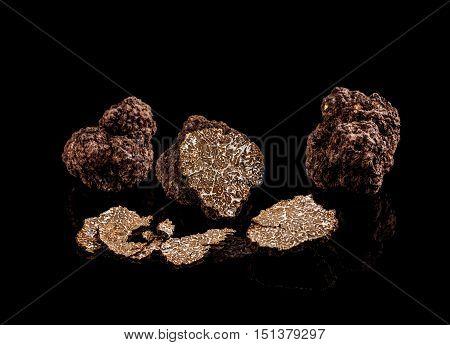 Freshly harvested truffles on black background, studio shot