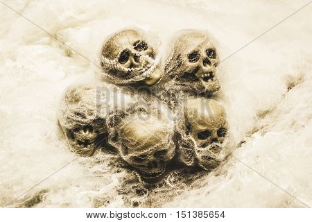 Creepy still-life photography on morbid skulls covered in spooky halloween spiderwebs
