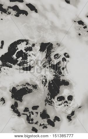 Grainy digital artwork on a dramatic cobwebby skull background with scattered human skulls enveloped in spidery silk