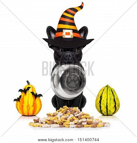Halloween  Devil Dog Hungry For Food