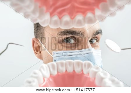 Cheerful dentist looks through the tooth jaw model. Man holds a dental bur and a mirror. He wears a blue medical mask. Macro photo. Horizontal.