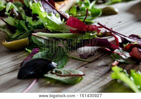Set Of Salad Greens.