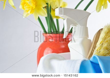 Sprng Cleaning