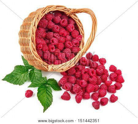 Fresh berries raspberry in wicker basket strewed with green leaves. Isolated on white background