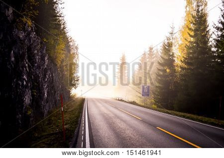 morning fog in norway with street and forest in autumn