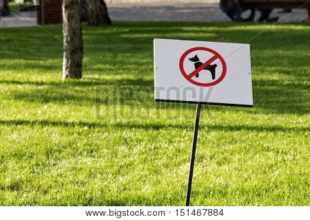 No dog allowed sign in the park with green grass on the background