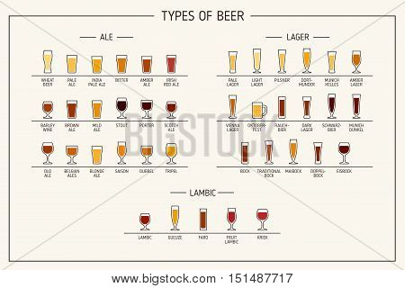 Types of beer. Various types of beer in recommended glasses. Vector