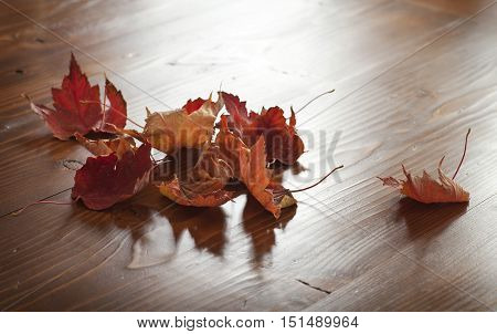 Selective focus on red maple leaves with pine wood background
