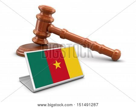 3D Illustration. 3d wooden mallet and Cameroon flag. Image with clipping path