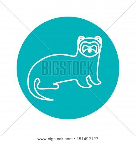 Circle shape with nutria wild animal vector illustration