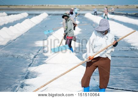 Phetchaburi Thailand- March 112015: Unidentified workers gathering salt on the salines.