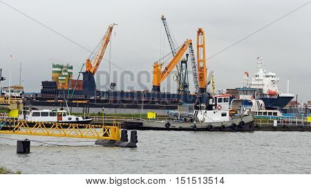 A large bulk carrier loaded with ship cranes. Ship in cargo port terminal. Container ship being unloaded in the Rotterdam harbor.