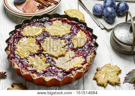 Autumn Plum Cake