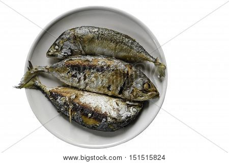 Fried mackerel fish in dish isolated on white background. include clipping path.