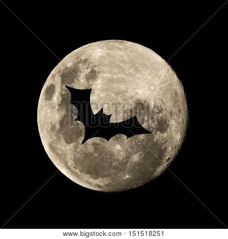 Hallowen Batt Flies In The Moon