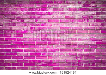 Bright colorful fuchsia brick wall for background.