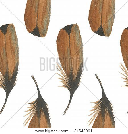 Watercolor bird feather pattern from wing isolated. Aquarelle feather for background, texture, wrapper pattern, frame or border.