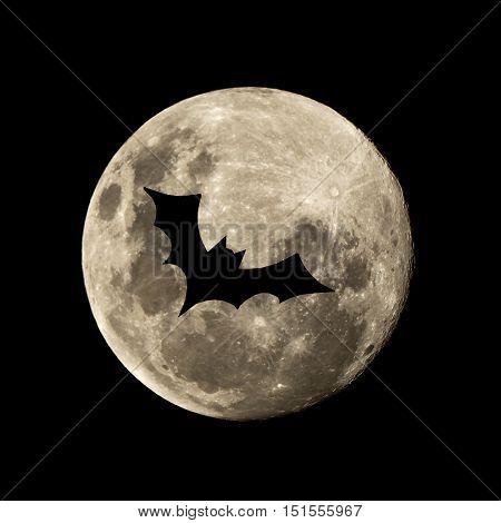 Hallowen Bat Flies In The Moon
