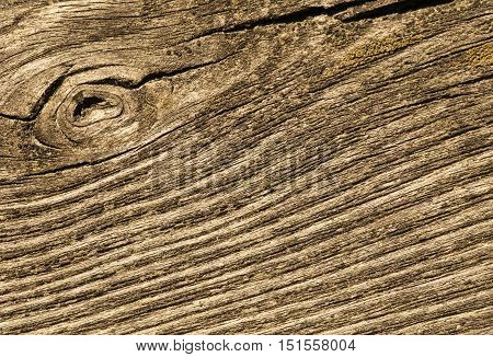 Closeup of old cracked wood for texture or background