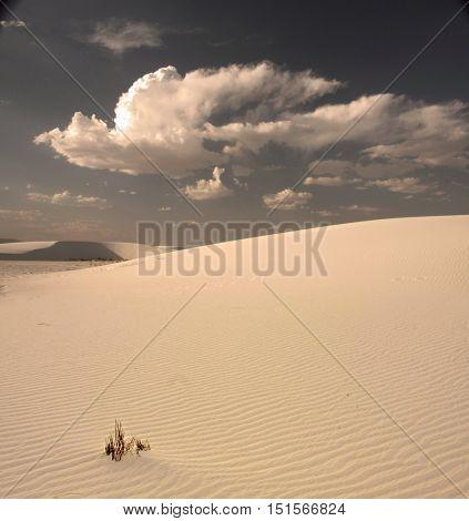 White Sands New Mexico Desert USA