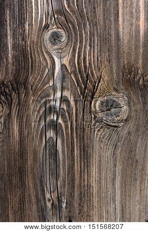 Brown wooden background texture. Organic swirl details