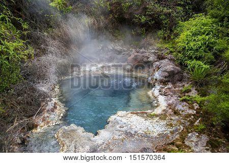 Soda Fountain In Orakei Korako Geothermal Area, Nz