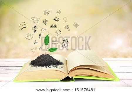 Heap of soil with young sprout on book page. Icons on blurred  background. Knowledge concept.