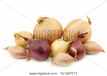 mixed onions on a white background