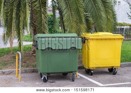 garbage containers in the street under a palm tree