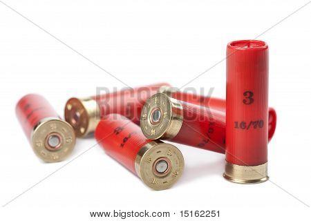 Shotgun Cartridges Isolated Over White