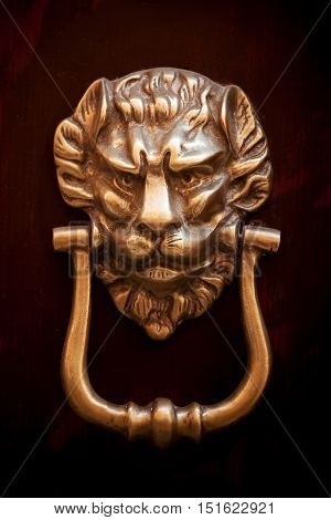 Old copper door handle in the form of a lion