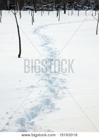 Winter footpath
