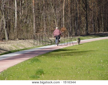 Dog Is Running With The Bike