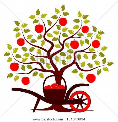 vector apple tree and hand barrow with basket of apples isolated on white background