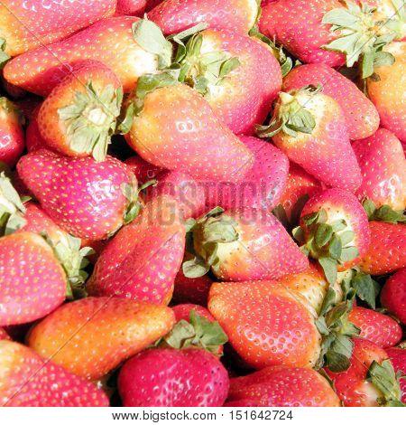 Strawberry on bazaar in Tel Aviv IsraelJanuary 12 2011