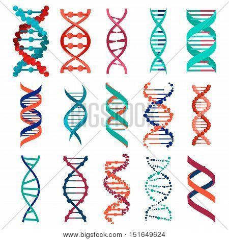 DNA molecule sign set, genetic elements and icons collection strand. Vector eps10