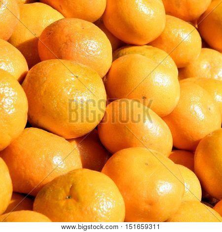 The clementines on bazaar in Tel Aviv Israel